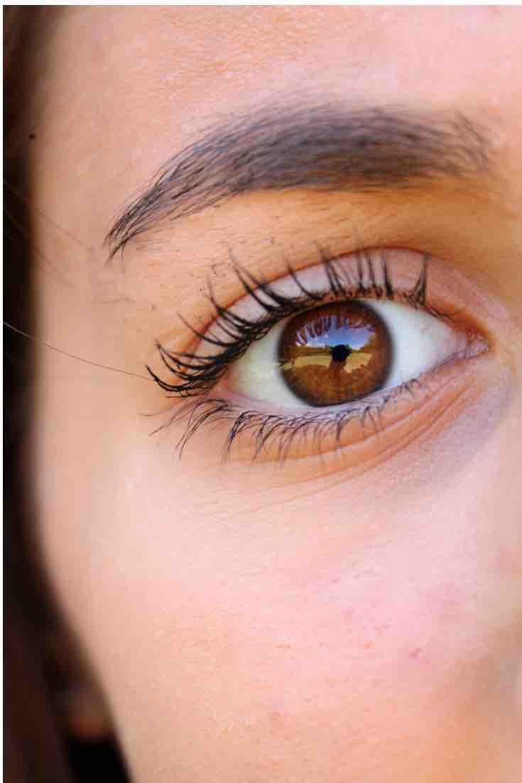 ebd334b00ab Your Eyelashes Grow Back Fast. How to Fix Eyelashes