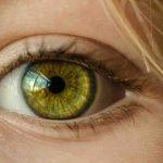 Can eyelashes regrow